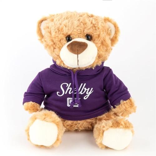 Teddy Bear with Purple Shelby Hoody