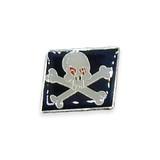 Vintage Skull and Crossbones Flag Pin