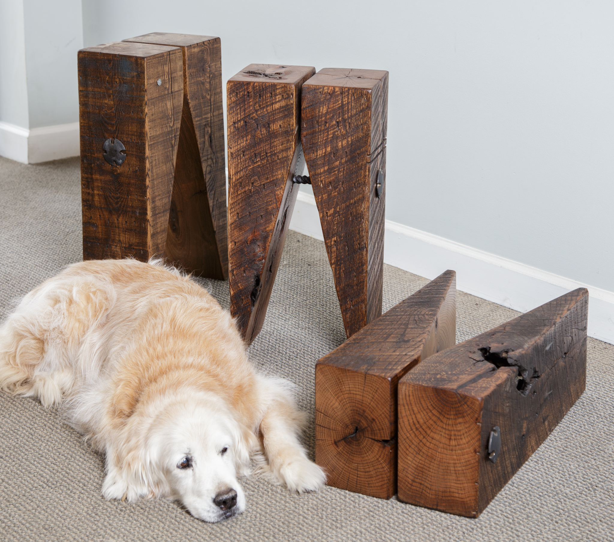 Golden retriever dog with wood timber side table stools