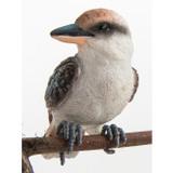 Kookaburra  - Pot Sitter