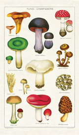 Tea Towel - Mushrooms