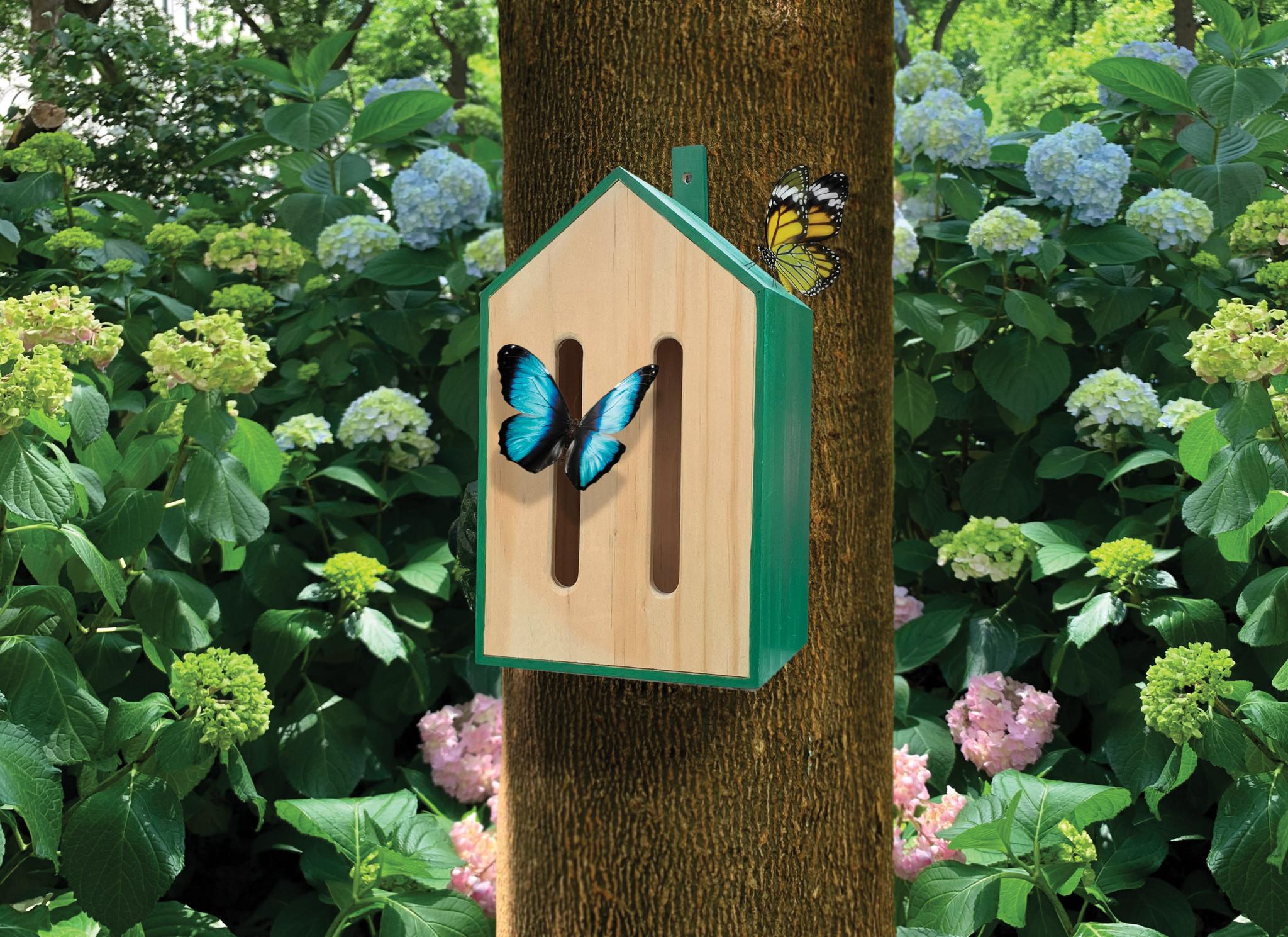 Little Butterfly House