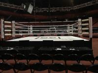 PRO Fight Polyetheylene Wing Chun Dummy for Two - Boxing