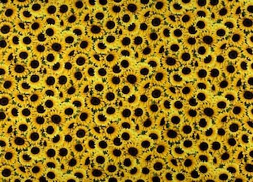 Yellow Mini Sunflowers