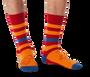 Lion Fat Stripes Socks