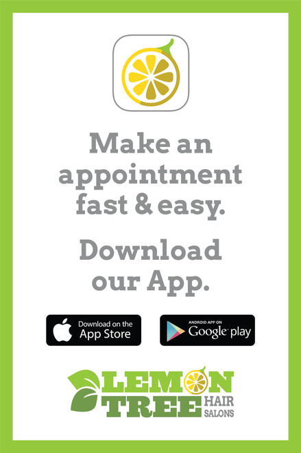 "24""x36"" Window Sign – Download our App –Lemon Tree"