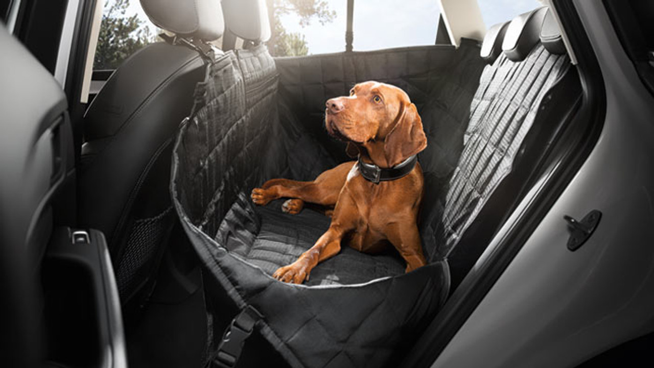 Audi Rear Seat Protective Cover