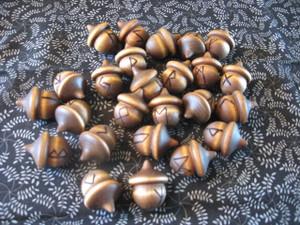 Full Set of Elder Futhark Acorns