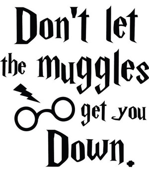 Harry Potter Vinyl * Dont Let The Muggles Get You Down