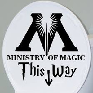 Harry Potter Vinyl * Ministry of Magic