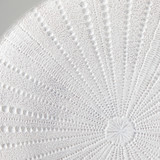 Urchin Decorative Plate [HABLURCHI20]