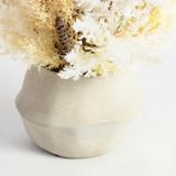 Natural Dried Bouquet in Vase [ROGLNATUR21]