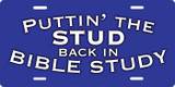 Bible Stud License Plate