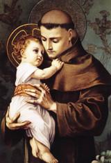 St. Anthony with Jesus Indoor Outdoor Aluminum Print