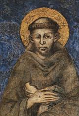 St. Francis by Cimabue Indoor Outdoor Aluminum Print
