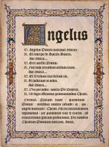 Latin Angelus Poster