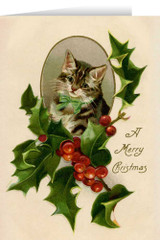 Vintage Kitten with Holly Christmas Cards (box of 25)
