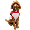 Sydney Swans Dog Jumper - Medium