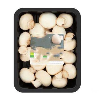 White mushroom 1pcs (250GM)