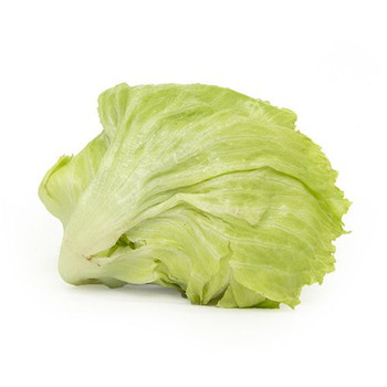 Iceberg lettuce Iran 500gm