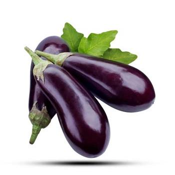 Eggplant Big Organic Doha 1kg