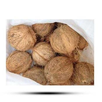 Coconut Bag India 25 Pcs