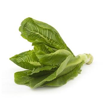 Lettuce Iran 500gm