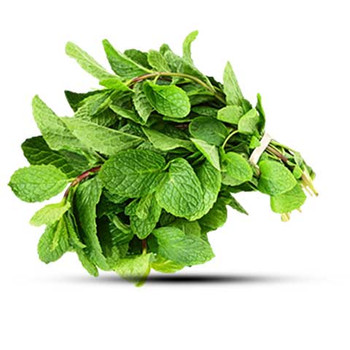 Mint Leaves   Bunch(150gm Above)