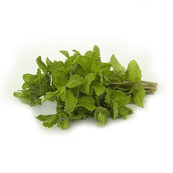 Mint Leaves Iran 250gm