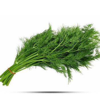 Dill_leaves 250gm