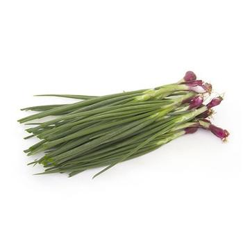 Spring Onion Labanon 250gm
