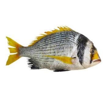 FASKAR - 1kg