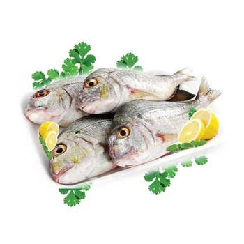 Kurkufan Fish - 1kg