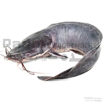 CAT FISH 1kg