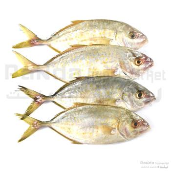 Jesh Fish Small 1kg