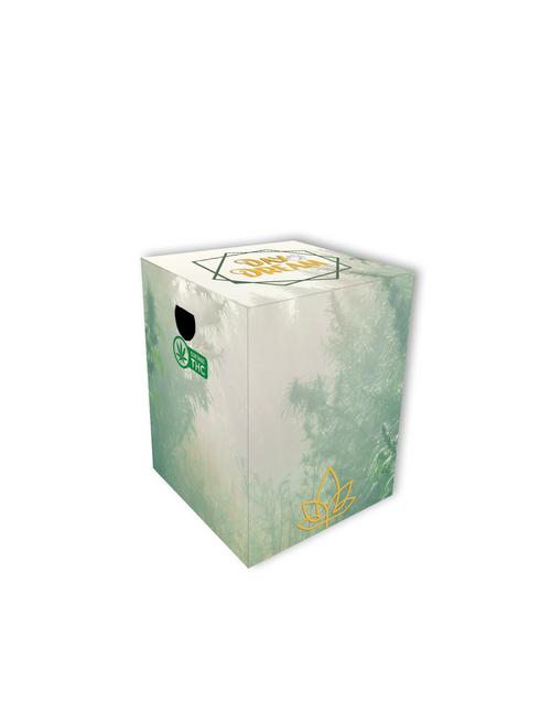 Custom 4 Pack Skinny Can Carton