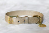 Dog Collar - Park Avenue Gold_Walk_www.hugoandotto.com