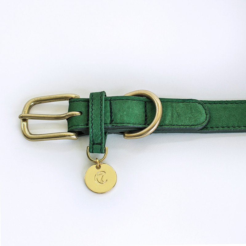 Dog Collar - Tiergarten Park Green Buckle www.hugoandotto.com