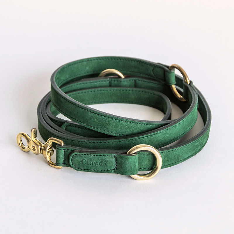 Dog Collar Tiergarten - Nubuck Park Green