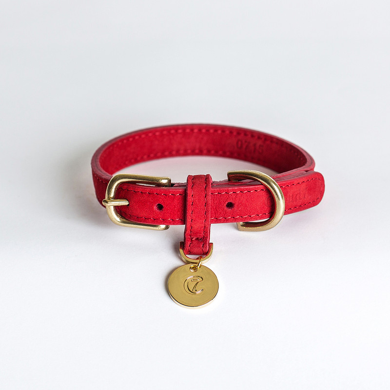 Dog Collar - Tiergarten Cherry Red Small www.hugoandotto.com