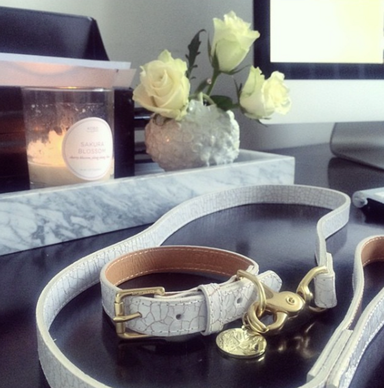Dog Collar & Lead - Madison Avenue_Walk_White & Gold Crackled Glazed Italian Leather_Lifestyle_www.hugoandotto.com