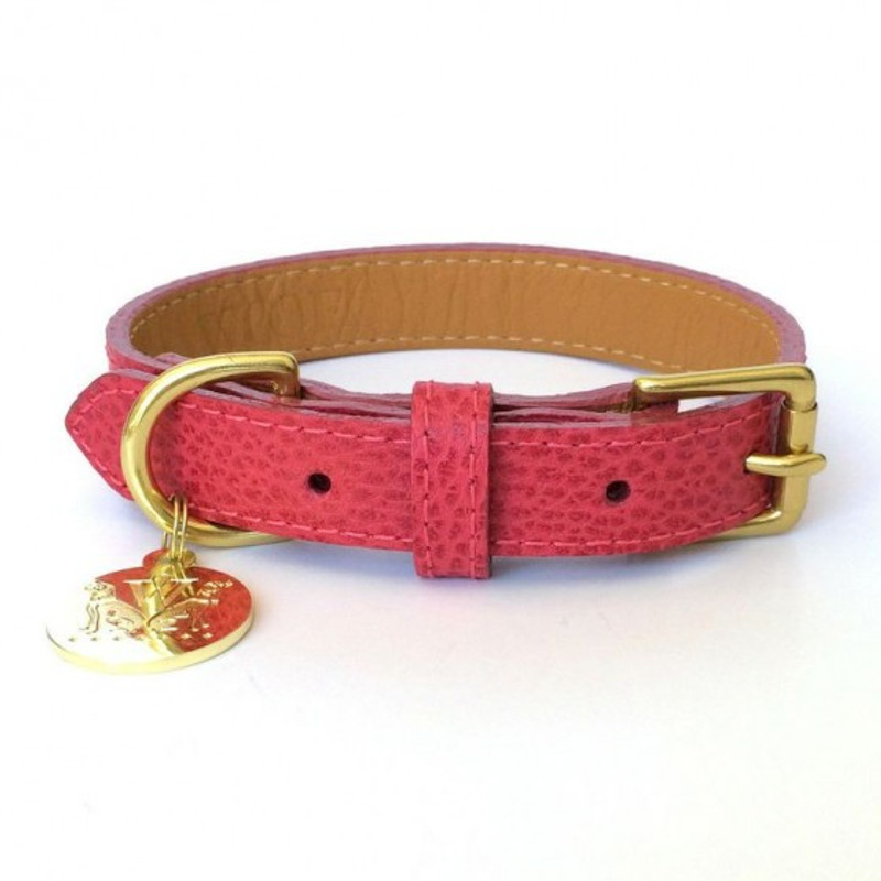 Dog Collar - Perry Street Pink_Walk_www.hugoandotto.com