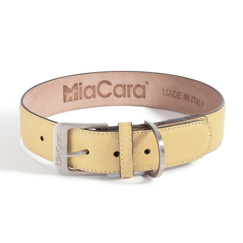 Dog Collar - Torino Lemon_Walk_www.hugoandotto.com