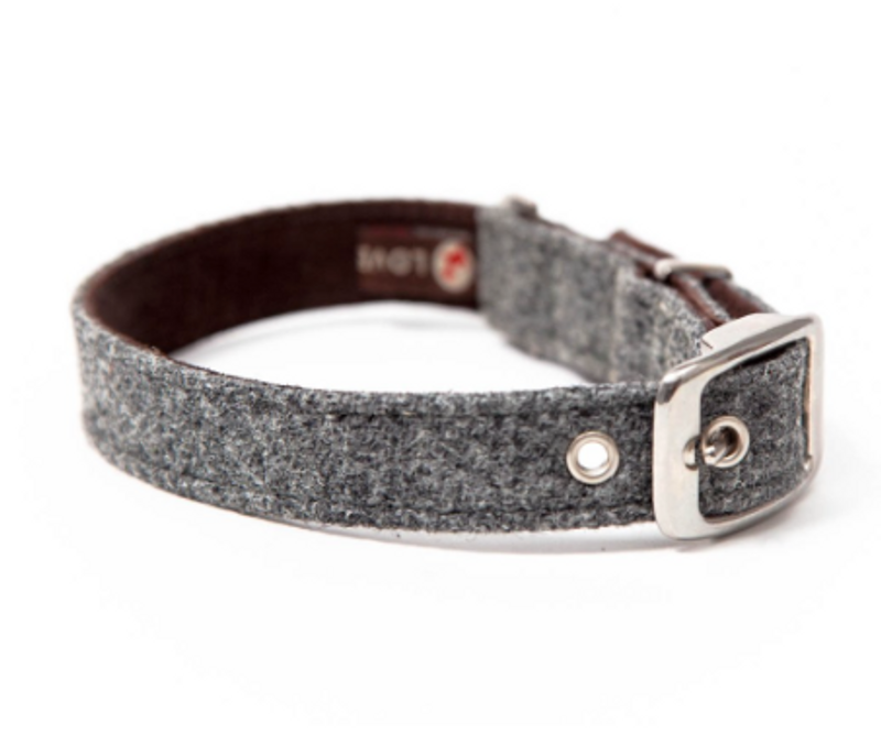 Dog Collar - Daplyn Harris Tweed Grey_Walk_www.hugoandotto.com