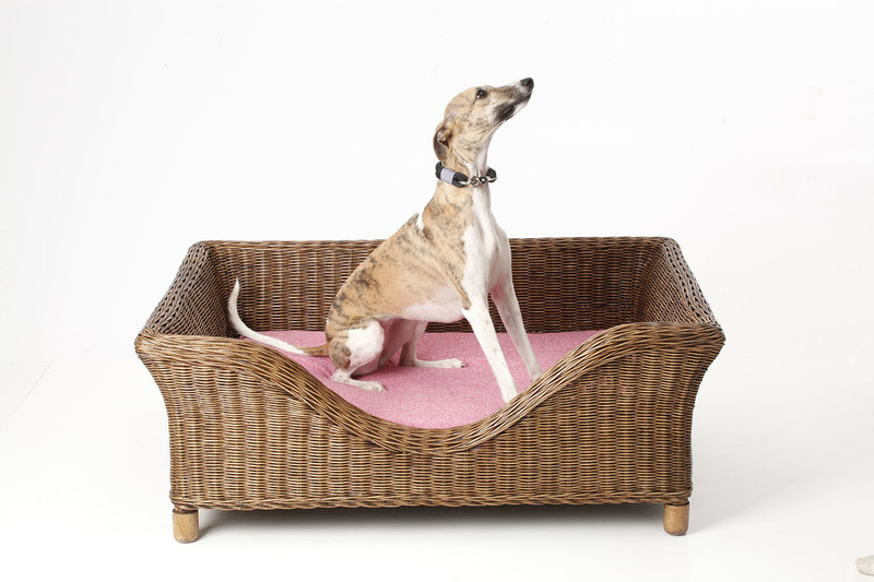 Hugo_&_Otto_Harewood_Silver_Lilac_Candy_Denim_Dog_Cushion_jpeg