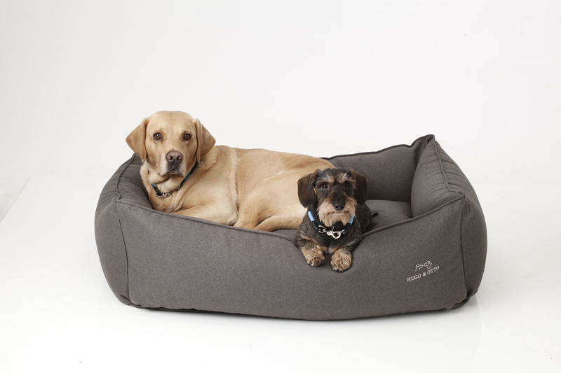 Hugo_&_Otto_Whitehall_Dog_Bed_Anthracite_Hunter_Finnbar_lifestyle_jpeg
