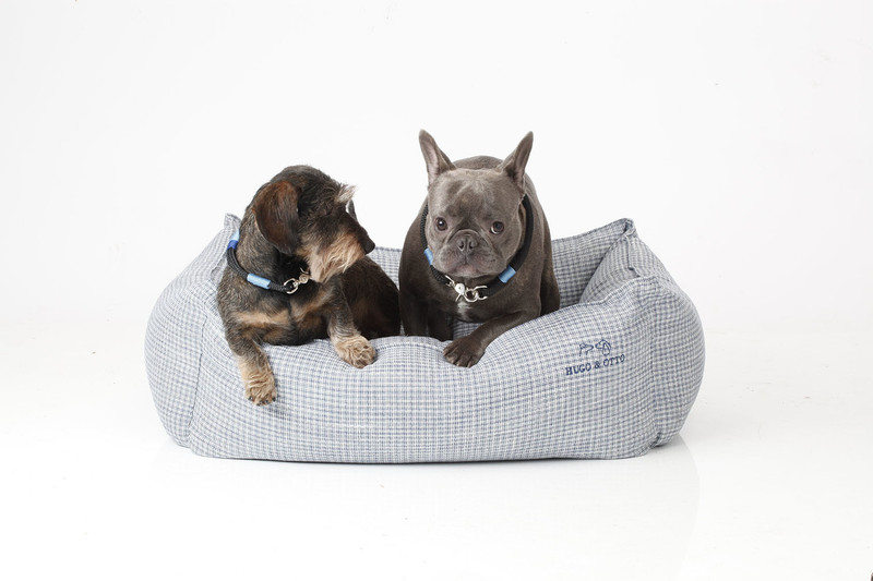 Hugo_&_Otto_Dover_Dog_Bed_Cobalt_Medium_Finnbar_Luthur_jpeg