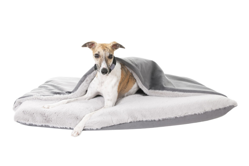 Hugo_and_Otto_Cloud_Snuggle_Dog_Bed _Graphite_Silver_Sybil_Lifestyle_jpeg