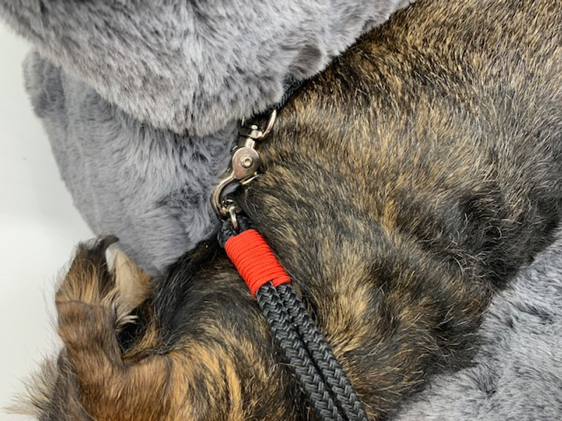 Zhivago_Dog_Carrier_Storm_Securing_Strap_With_Collar_www.hugoandotto.com