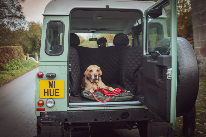 Hugo_and_Otto_Clemie_Flat_Dog_Cushion_Hunter_Lifestyle_Land_Rover_Defender_90_Heritage_jpeg